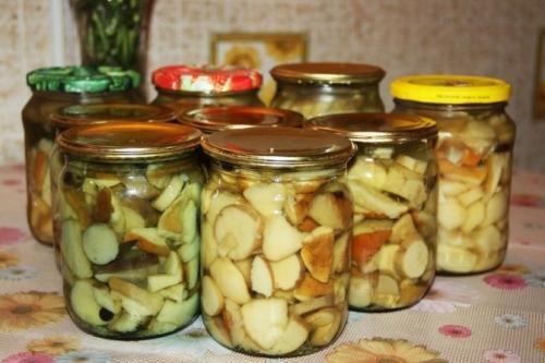 Рецепт консервации грибов белых. Ароматные маринованные белые грибы на зиму в банках, ультра простой рецепт