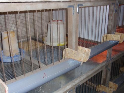 Летние клетки для кур бройлеров. 2korney › Блог › клетка для бройлеров своими руками