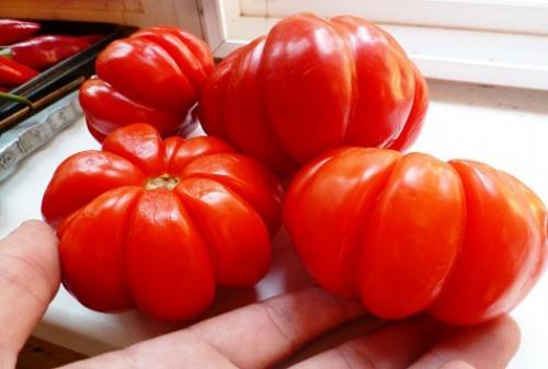 Томат Лотарингская красавица красная: характеристика, описание сорта, отзывы, фото, урожайность