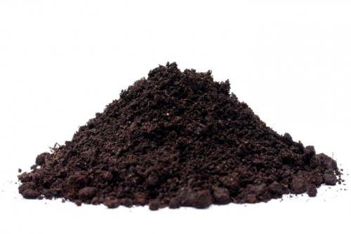 Польза соломы на огороде. Полезные свойства и вред при удобрении соломой