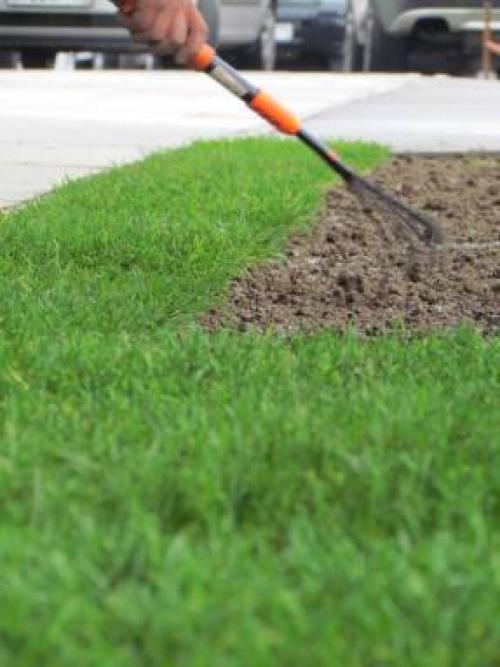 Можно ли стелить рулонный газон осенью. Фронт работ после посадки газона
