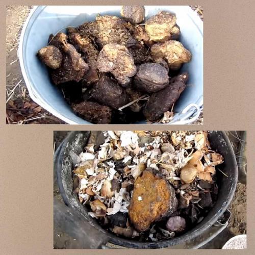 Когда вносить компост в почву осенью или весной. Органические