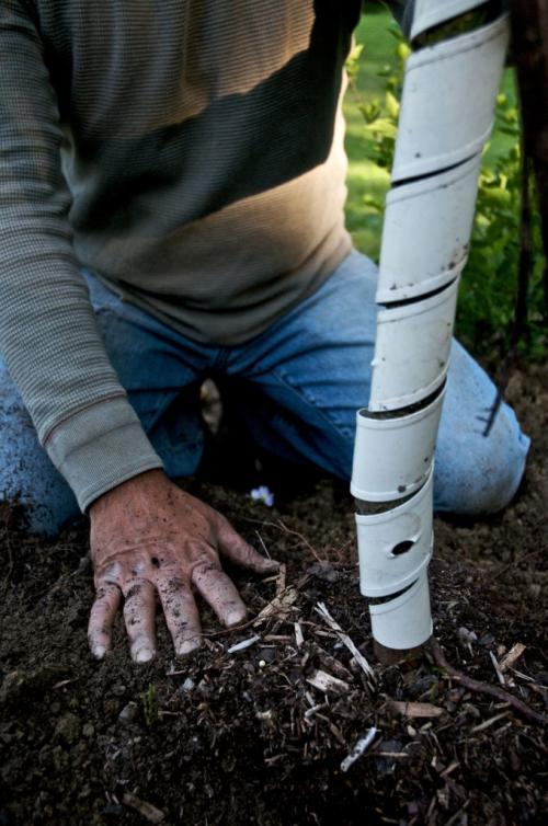 Как защитить деревья от зайцев. Защита сада от набегов зайцев