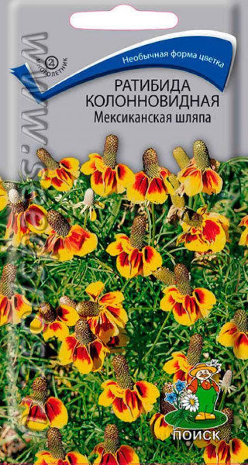 Ратибида колоновидная цветок прерий. Ратибида - гостья из мексиканских прерий