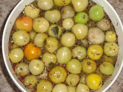 Что делать с зелеными помидорами. Бочковые томаты быстрого приготовления