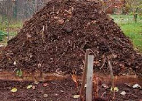 Надо ли закрывать компостную кучу на зиму