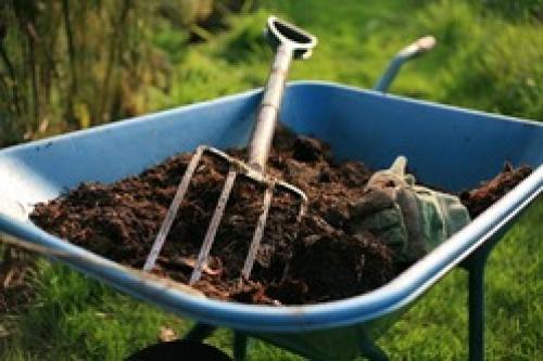 Чем компост отличается от перегноя