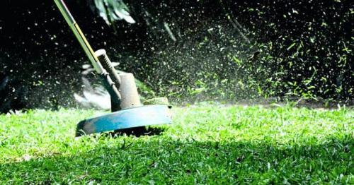 Когда последний раз стричь газон перед зимой.