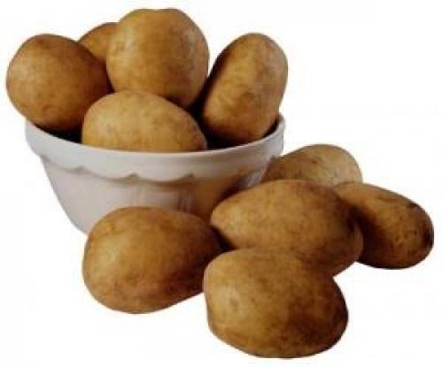 Рассыпчатые сорта картофеля для Средней полосы. Список лучших сортов картофеля по алфавиту 05