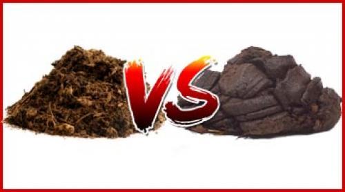Что лучше навоз или компост. Перегной или навоз, как удобрение, что лучше?!