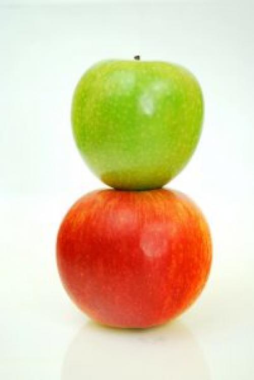 Как сохранить яблоки в квартире подольше. Сорта для долгого хранения