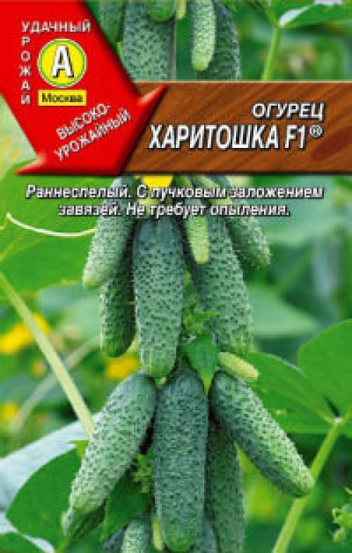 что обозначает F1 на семенах огурцов