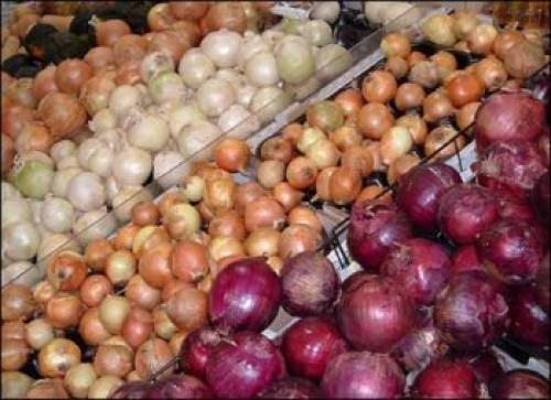 Какие овощи можно сеять под зиму. Как правильно сеять овощи под зиму 02