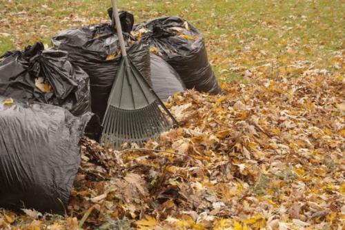 Перегной в мешках, как сделать. Как сделать компост из листьев деревьев в мешках?