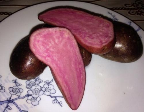 Картофель с белой мякотью разваристый. Классификация картофеля по цвету кожуры и мякоти