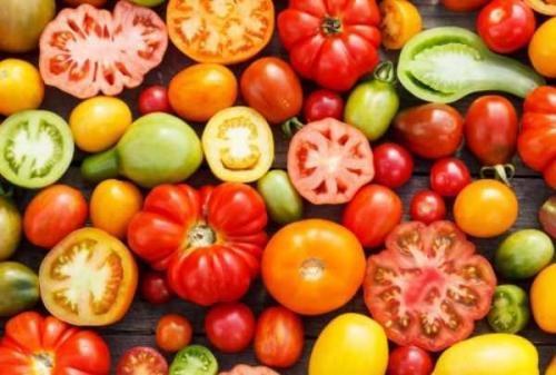 Для сока сорта томатов. Основные критерии выбора семян томатов