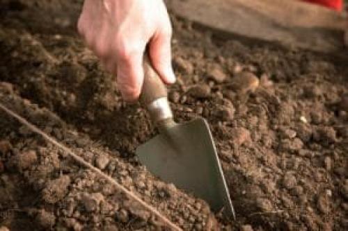 Как готовить к зиме огород. Как правильно соблюсти очередность подготовки