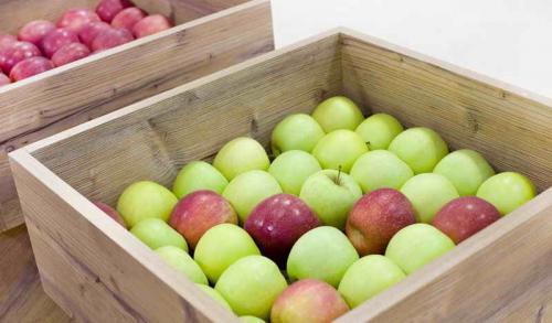 Как лучше хранить яблоки в домашних условиях на зиму. Условия хранения