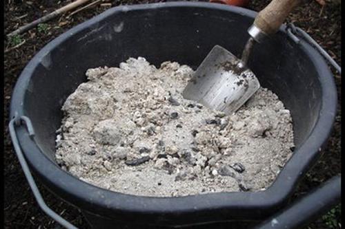 Подготовка дачного участка к зиме деревья и кустарники. Подкормка
