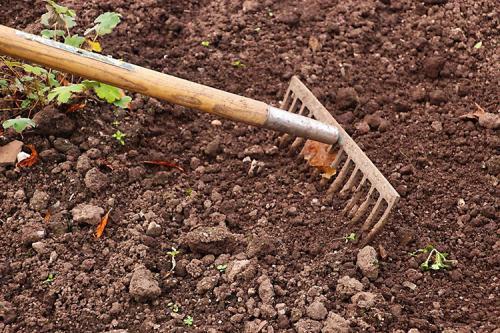 Подготовка огорода к зиме после сбора урожая. Как улучшить состояние земли