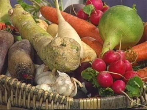 Природное земледелие морковь. Некоторые особенности при выращивании Свеклы, Моркови, Редьки, Репы и других!