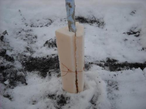 Как укрыть яблоню на зиму в сибири. Технология утепления