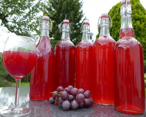 Как выдавить сок из винограда. Виноградный сок без пресса, соковыжималки и соковарки 09