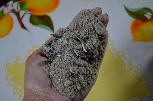 Посадка малины осенью удобрения. Что положить в лунку при посадке малины осенью. Лучшие удобрения