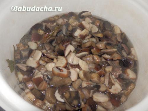 Рецепт рассола для грибов. Рецепт маринада для грибов с уксусом 9 %
