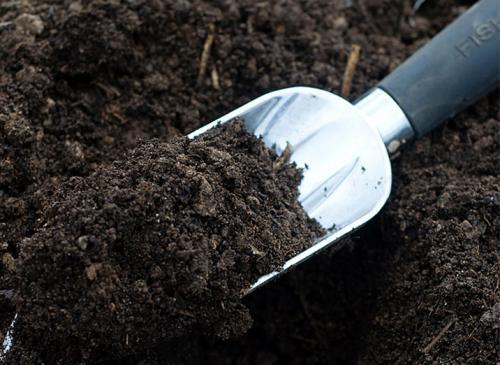 Что такое почвенная смесь. Почвенная смесь для рассады своими руками
