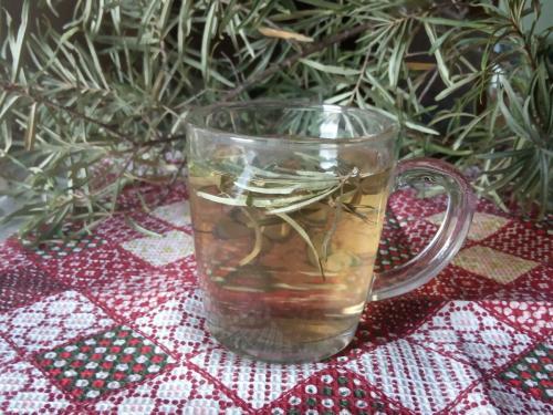Листья облепихи от чего можно пить. Пришла осенняя пора -чай с облепихой пить пора. Целебный чай из листьев облепихи.
