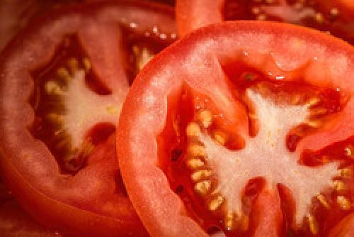 С каких томатов можно брать семена. Собираем семена томатов –, что нужно знать