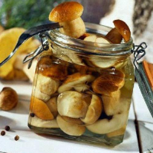 Как солить грибы. Засолка грибов на зиму в банках: рецепты