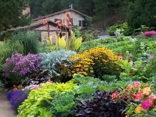 Как сделать клумбу цветущую от весны до осени. Клумбы, цветущие с ранней весны до поздней осени в закладки 91