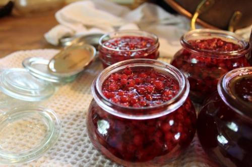 Варенье из красной смородины пятиминутка рецепт. Варенье из красной смородины: 9 простых рецептов на зиму