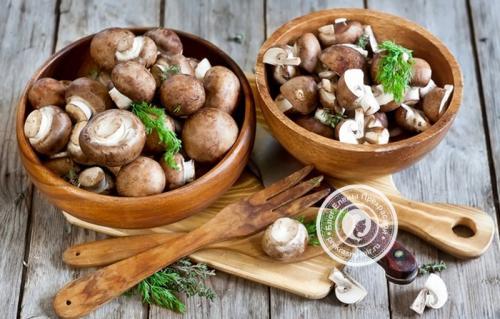 Как заготовить грибы на зиму. Почему заготовки из грибов настолько популярны?