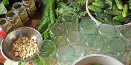 Рецепт засолки огурцов на зиму в маленьких банках. Засолка огурцов на зиму в литровых банках