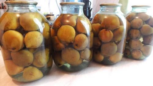 Моченые груши. Груши моченые по-русски (старинные рецепты)