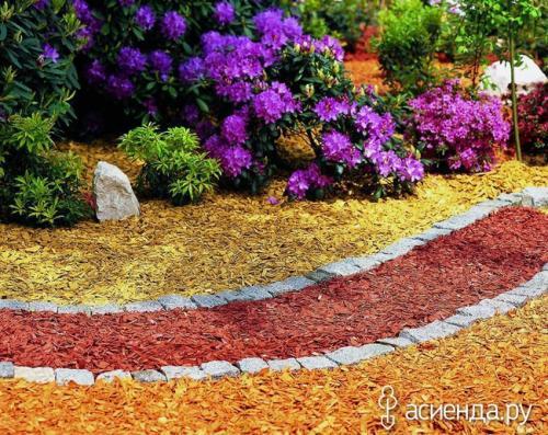 Подготовка к зиме декоративных цветущих кустарников.