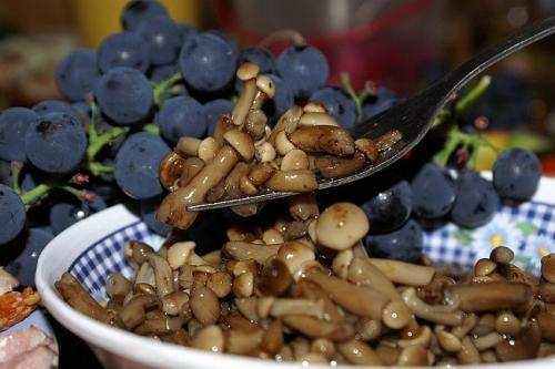 Универсальный маринад для грибов. Универсальный и простой маринад для заготовки любых грибов