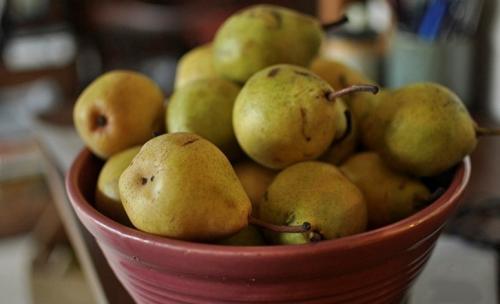 Заготовки из груш для пирогов. Повидло из груш на зиму– простой и вкусный рецепт приготовления в домашних условиях
