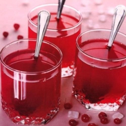 Сок из клюквы на зиму через соковыжималку. Как изготовить сок клюквы в домашних условиях