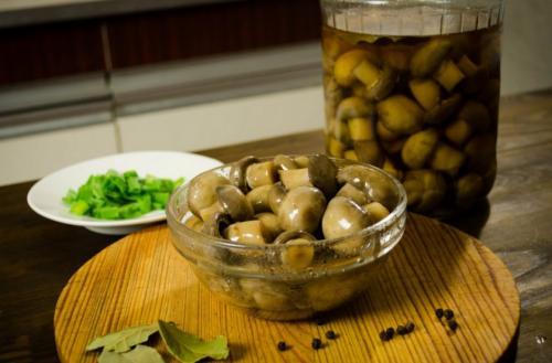 Рецепт гриби консервовані. Рецепты приготовления консервированных шампиньонов и блюд из них
