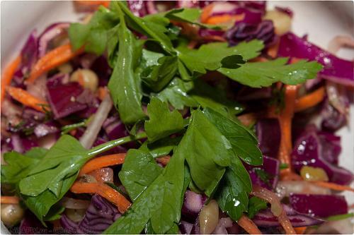 Рецепты из красной капусты вкусные и простые на зиму. Заготовка салатов из краснокочанной капусты на зиму
