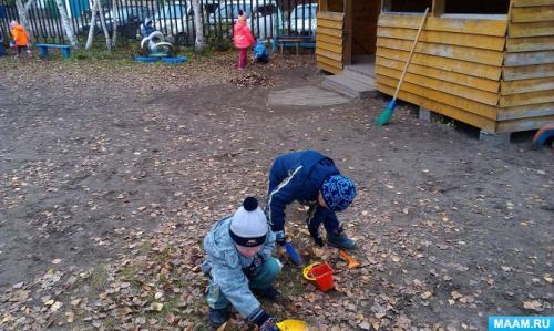 Осенняя уборка на даче, что делать в первую очередь. Работы в саду осенью 07