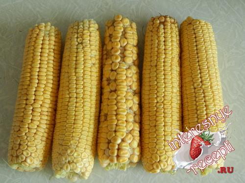 Консервация кукурузы на зиму в початках. Приготовление консервированной кукурузы в початках на зиму