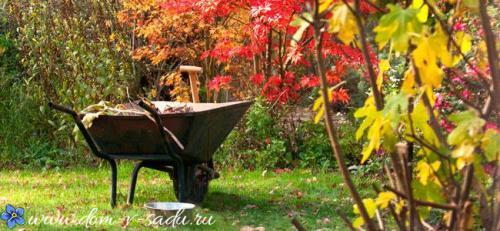 Рассмотрите рисунки, какие осенние работы проводят в поле в саду на огороде. Осеннее удобрение.