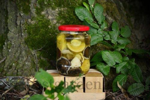 Как консервировать грибы на зиму в банках простой рецепт. Лесные грибы маринованные на зиму