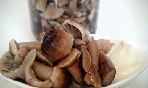 Рецепт консервирования грибов белых. Консервируем белые грибы на зиму: рецепты и способы